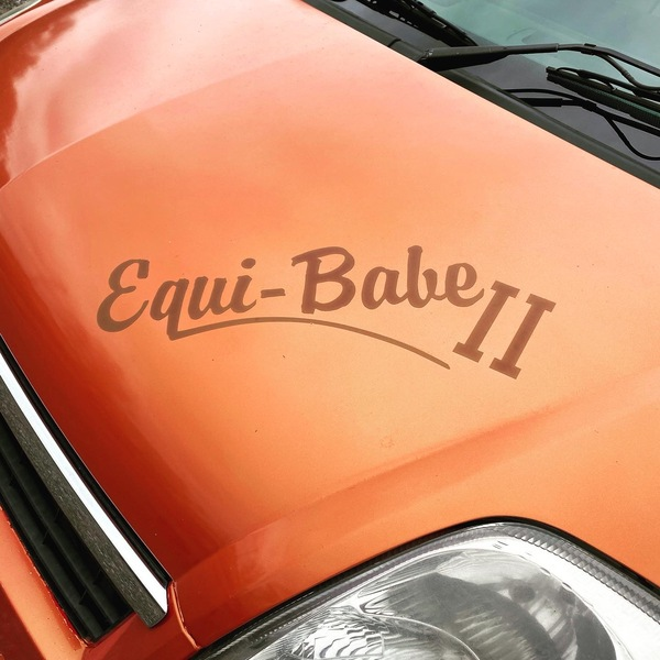 EQUI BABE Horsebox 3.5t