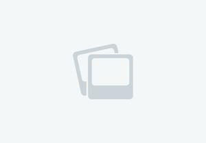 Unique horseboxes 2020 new build stallion box on 2015 Renault master