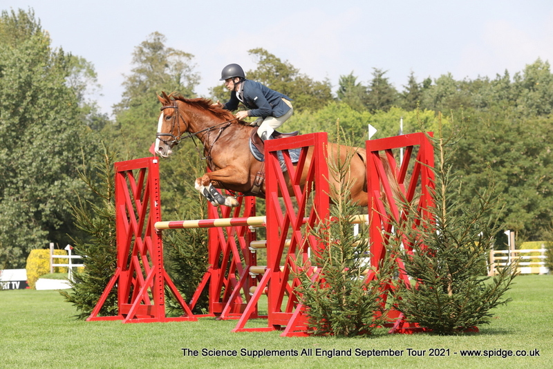 Bezzie - Top level young horse