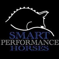 Smart Performance Horses